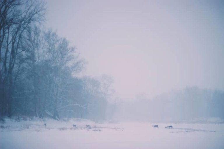 snow-safety